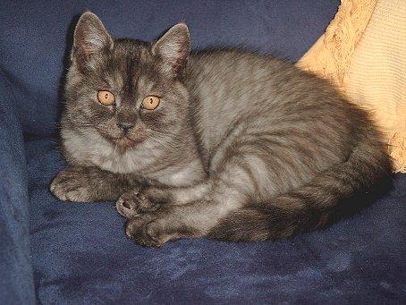Phoebe 2002-09-30, 01
