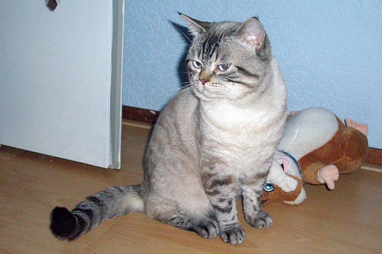 Beau 2007-05-19, 04_web