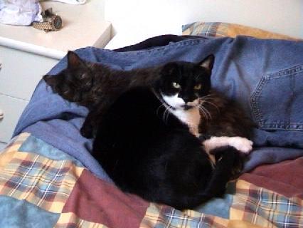 Jessie en Moortje 2000-12-05, 02