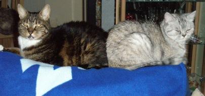 Blue Tess en Moppie 2007-03-25, 01