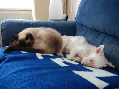 Laleh en Quincy 2012-09-17, 02