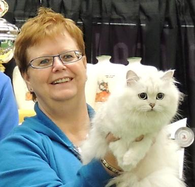 Limbra Cat Club show 2014-11-09, 16_uitsnede