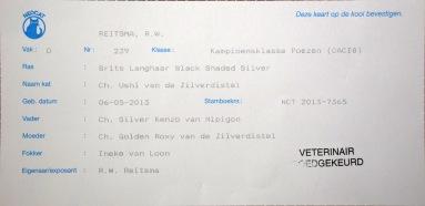 Nijmegen show 2015-09-27, 005_kooikaart Ushi