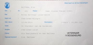 Nijmegen show 2015-09-27, 006_kooikaart Mili