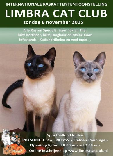 Helden-Panningen 2015-11-08, 01_Affiche