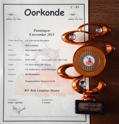Helden-Panningen 2015-11-08, 95_oorkonde en prijs BIV