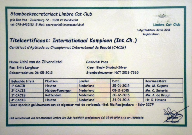 International Champion Certificaat Ushi, 2016-02-03