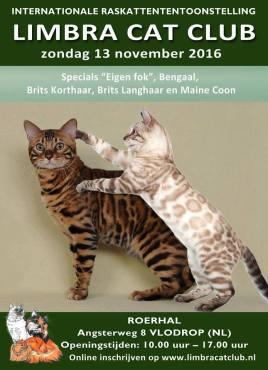 limbra-cat-club-show-2016-11-13-001_-affiche