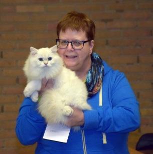 limbra-cat-club-show-2016-11-13-081