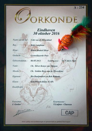 nlkv-show-2016-10-30-087_oorkonde-ushi