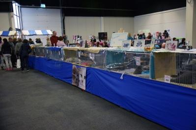 neocat-wereldshow-2017-01-29-067